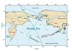 Where is the Bering Sea?