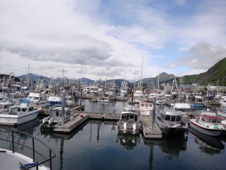 The marina.