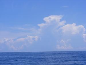 Cumulonimbus clouds on the horizon