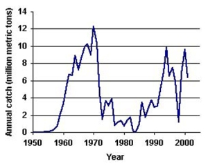 anchovy catch graph
