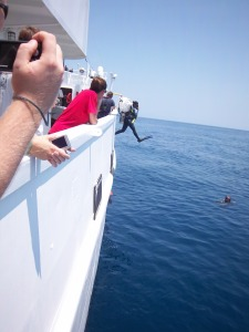 Sarah, Operations Officer, jumps overboard to perform dive operations
