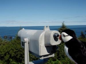 ...and birding.