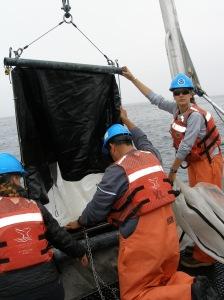 the tucker trawl