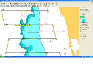 Gray's Harbor Transects