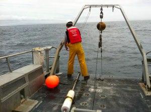 Rick servicing the Cape Alava 42 buoy.