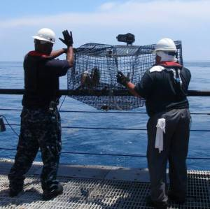 Crew deploys baited trap above guard rail on