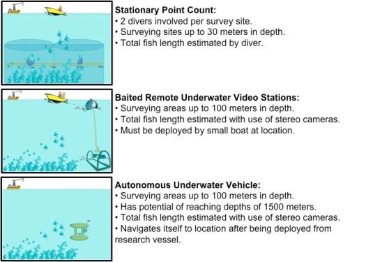 Comparison of Survey Methods