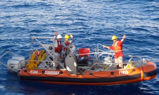BRUVS Team on SE-6
