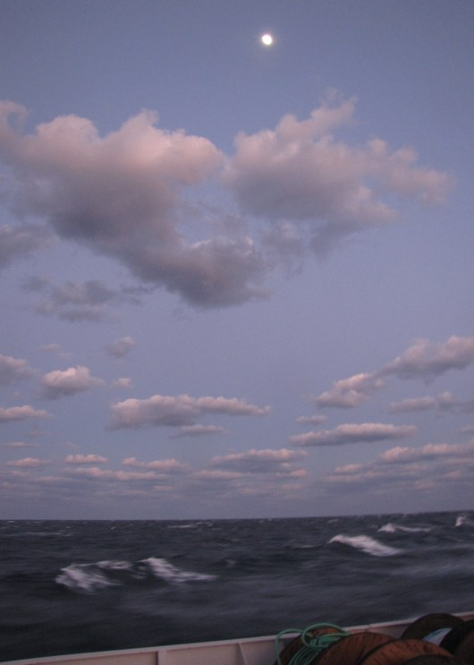 """As the sailors say: """"The sheep are grazing."""" A gale is brewing and kicking up whitecaps as we sail north to Charleston."""