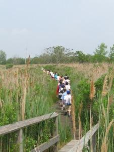 4th Grade Marsh Field Study