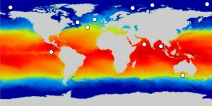 sea surface temperature map