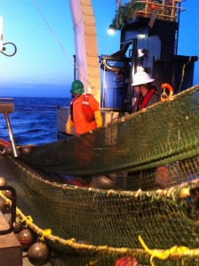83-112 Bottom Trawl Net