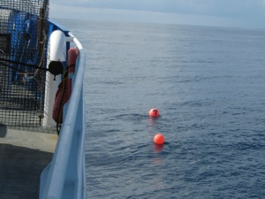 R/V Savannah approaching poly ball buoys on the starboard side