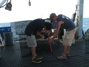 David and Adam P. are attaching cable hook ups to the side of a trap