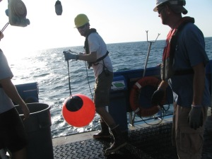 Nate is pulling poly balls and rigging onto the deck, as Adam P. gets ready to take the line