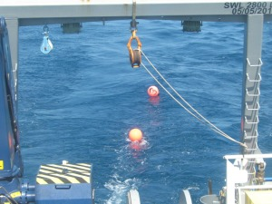 Poly ball buoys marking location of fish traps