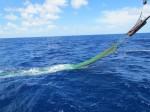 Trawling Net