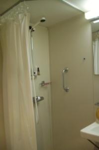 Spot the shower handle...