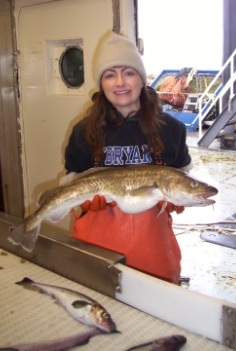 This was a large Pacific Cod...