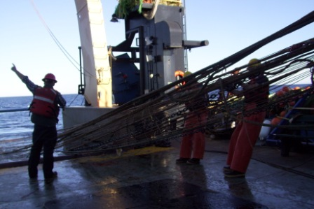 Here is a trawl returning back to the ship's deck!