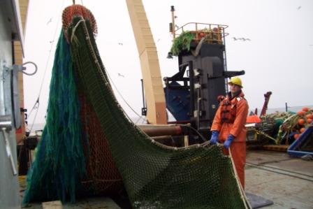 A full catch- success!  Without acoustics, it would be much harder for NOAA to monitor and study fish populations.