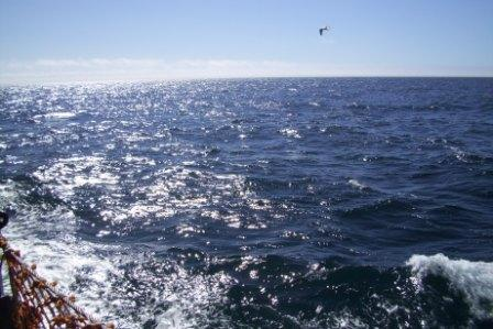 A lovely afternoon on the Bering Sea...