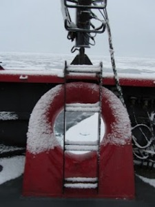 Snow on bow