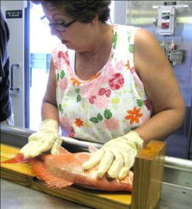 Measuring a red snapper