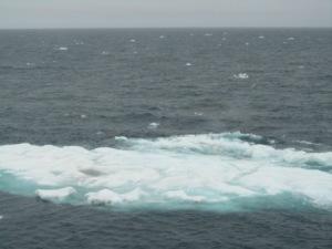 Waves on ice