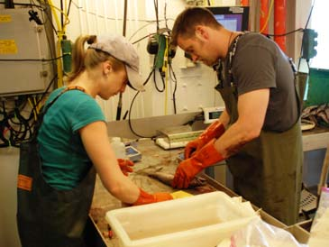 American fishery biologist, Melanie Johnson, and Canadian fishery biologist, Chris Grandin, take biological samples.