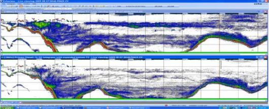 Here is an acoustic image (2 frequencies) as seen on the scientist's screen. The bottom wavy line is the seafloor, and the colored sections above are organisms located in the water column.