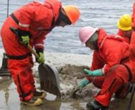 Sifting through the muddy sediment in search of rocks