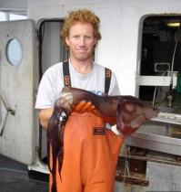 Here, I've got a Humboldt Squid.