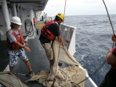 Retrieving the trawl
