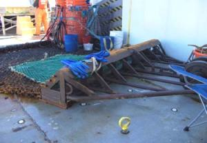 The business end of a scallop dredge