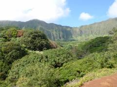 View from the Maunawili Trail
