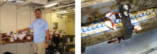 Jeff and the sensors in the lab (left) and dirty sensor with goose barnacles (right).