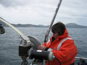 The CTD is attached to a cable operated by a winch.  The CTD acclimates to the water surface temperature before being lowered steadily to the bottom.  The equipment is raised to the surface using the winch and then brought aboard.  The CTD is connected to the computer for data retrieval.