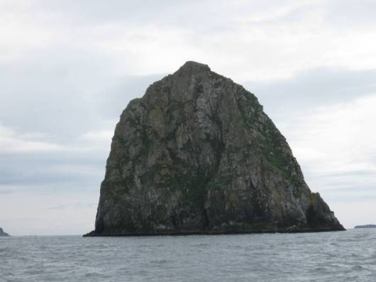 The light brown areas near the base of the rock are actually seals.
