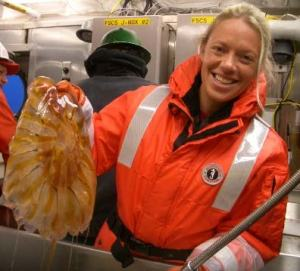 NOAA Scientist Abby separates out Chrysaora melanaster, common name Lions Mane.