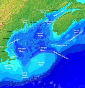 A map showing the area where the drifter buoy was deployed from the Delaware II