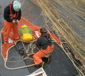 OSCAR DYSON'S deck crew attaches an acoustic device (yellow) to the fishing gear