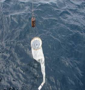 Manta net skimming the surface for zooplankton