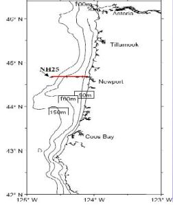 Coordinates for the longitudinal measurements of the first sampling site of my shift