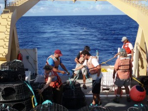 Maggie Flanagan, scientists, and ship's crew work together to set lobster traps