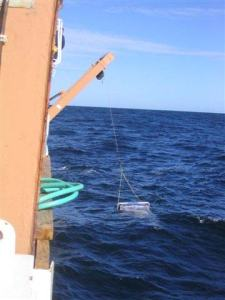 The Newston net hanging from a pulley on the A-frame