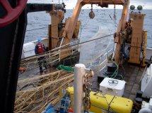 Deploying the fishing net