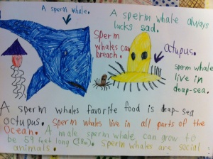 Whale Facts by first graders at Bell Top School.