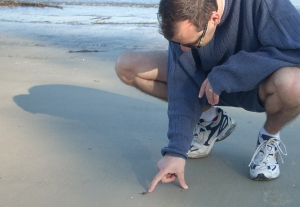 Learning by investigation on the shore of Jekyll Island