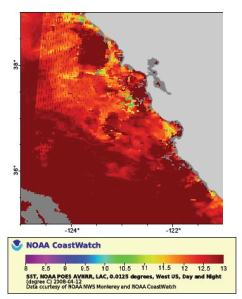 reported surface sea water temperatures for the California coast from satellite data.  The region of sampling is indicated by the box.